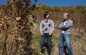中島さんは、まだ36歳。よいワインをつくる時間はたっぷりある。