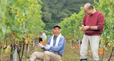 ようやく収穫の日を迎えてご満悦の小林村長